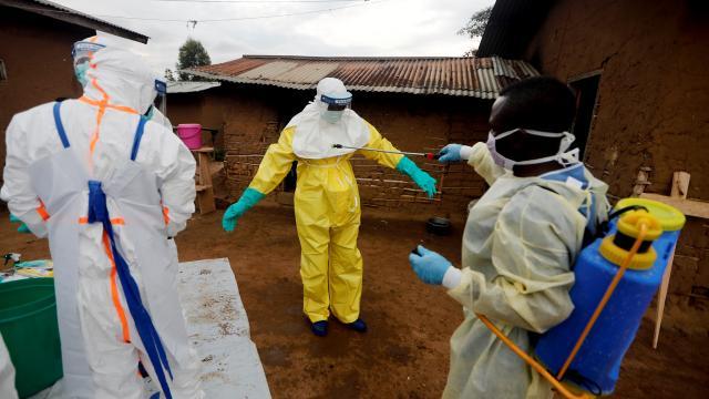 Gine'de yeni Ebola vakası tespit edildi