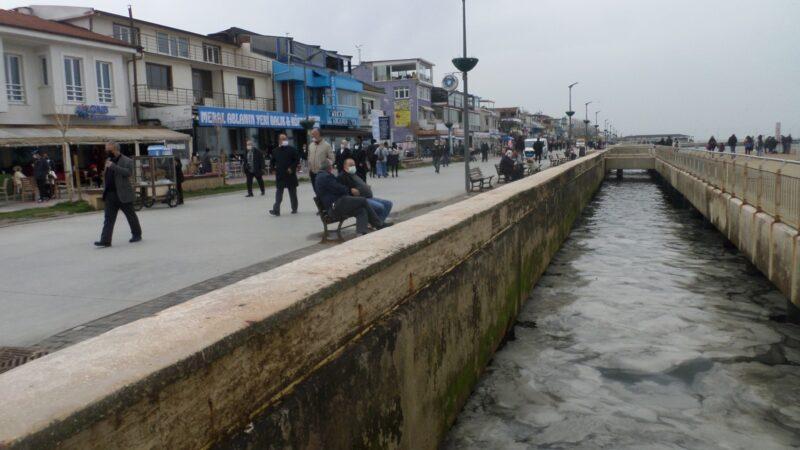 Bursa'da sahilde korkutan görüntü