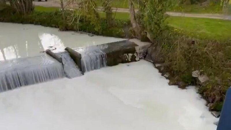 Süt tankeri nehre devrildi! Oluk oluk süt aktı