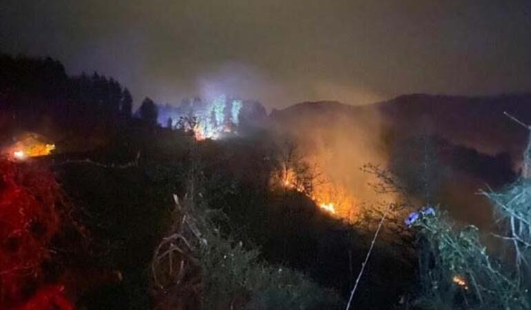 Korkutan orman yangını!