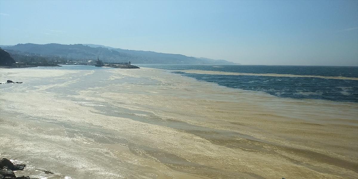 Görüntüler Bursa'dan! Sahili kapladı… Açıklama geldi
