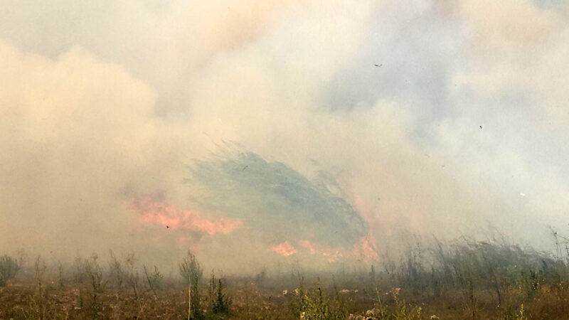 Seraların olduğu bölgede yangın! Yerleşim yerleri tehlike altında