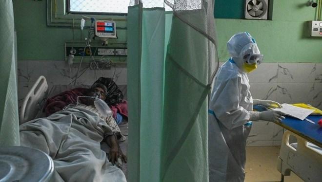 Kara mantar hastalığı bir ülkeye daha sıçradı