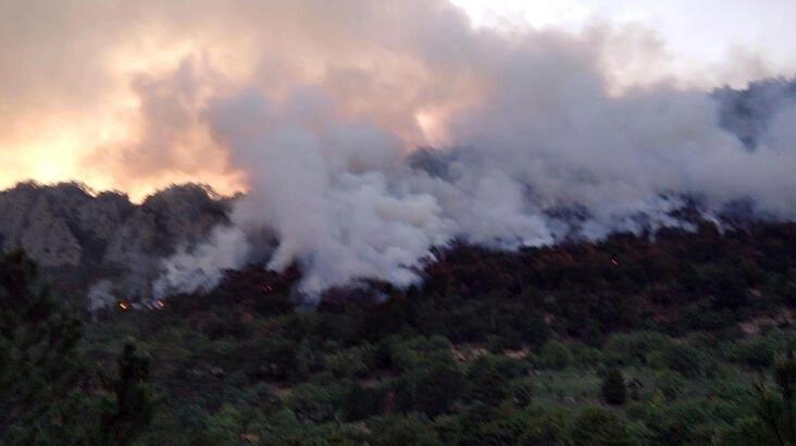14 saatte söndürüldü! 7 hektar alan zarar gördü