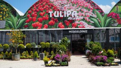 Bursa'da doğanın tüm renklerinin buluştuğu adres…
