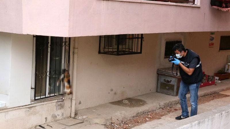Bunun adı vahşet! Gözdağı vermek için kediyi öldürüp camına astılar