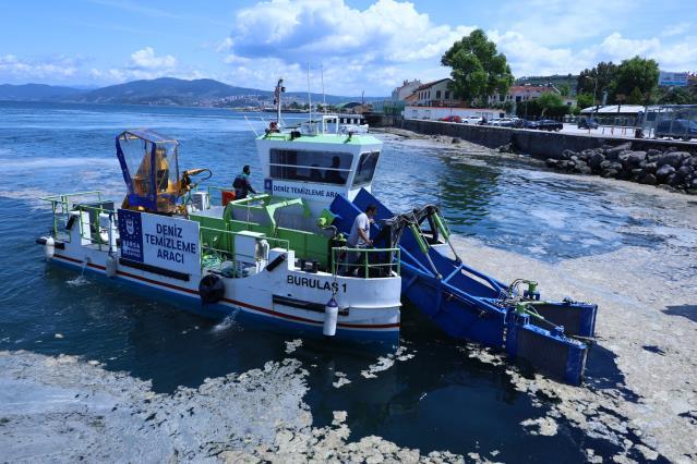 Bursa sahillerini kim temizliyor? Bunlara yaranmak mümkün değil!