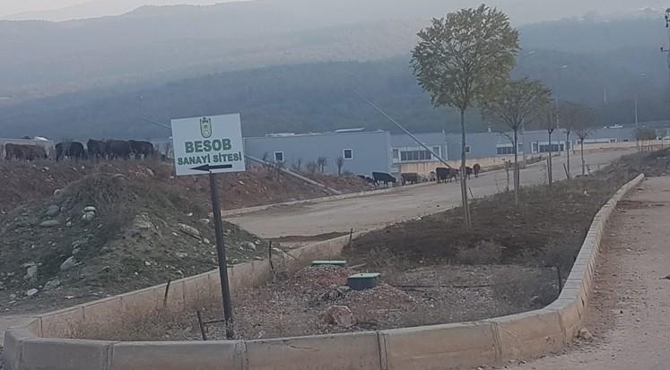 Bursa'nın hüsran projesinde önemli gelişme!