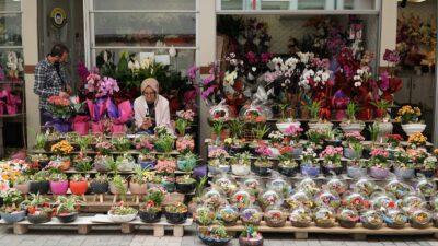 Anneler Günü öncesi Bursa'da çiçek fiyatları!