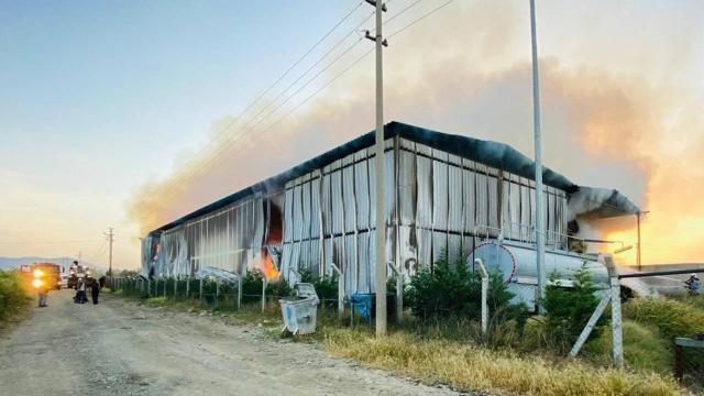 Çiftlikte yangın: 220 ton saman yandı