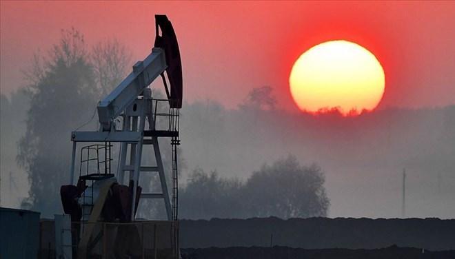 Petrol şirketinin ödediği fidye miktarı ortaya çıktı