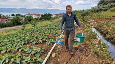 Bursa'da kabak hasadı başladı