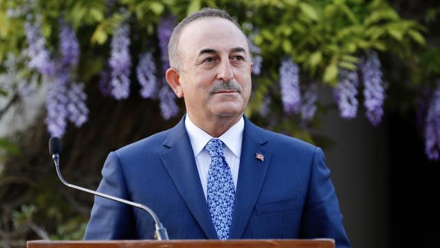 Bakan Çavuşoğlu Slovenya'da