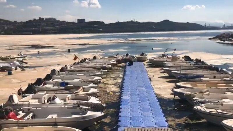 Deniz salyasıyla ilgili korkutan açıklama: Dipte oranlar yüksek çıktı