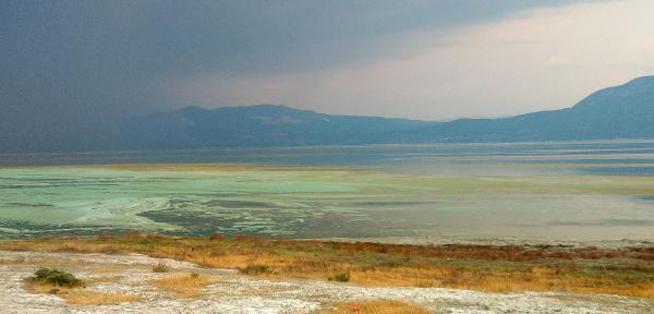 Şaşırtan görüntü! Gölün rengi değişti