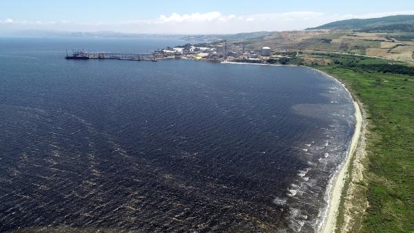 Sahillerin kumu siyaha boyandı! 'Denize girmek intihar gibi'