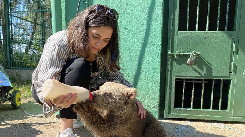 Ünlü oyuncu Bursa'da biberonla ayı besledi