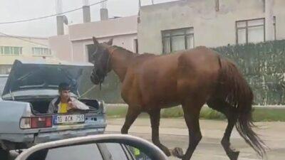 Bursa'da bu görüntüye ceza!