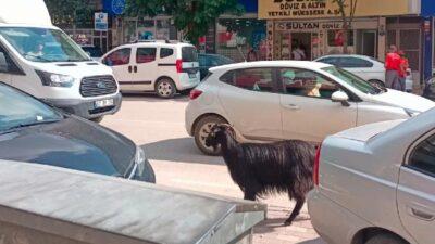 Bursa'da sürücülerin zor anları