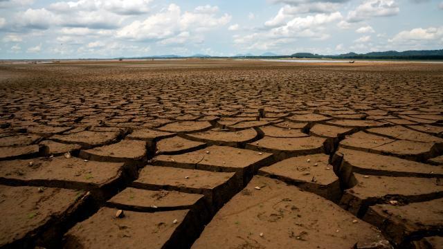 ABD'nin batı yakasında tarihi kuraklık