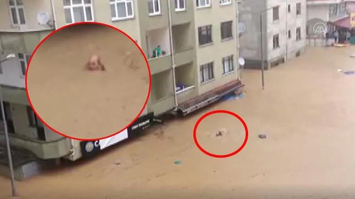 Artvin'de boğulmak üzere olan çift böyle kurtarıldı