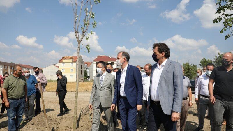 251 şehit anısına 251 ağaç toprakla buluştu