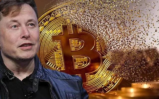 Piyasaları sallamıştı! Elon Musk'tan flaş Bitcoin hamlesi