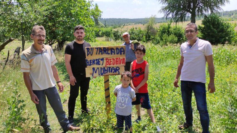 Bursa'da bu tarladaki meyve ve sebzeler herkese bedava