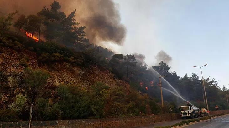 Adana'da 4 ilçedeki 6 noktada orman yangını sürüyor