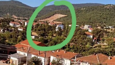 Bursa'da bu ağaçlar neden kesildi? Büyük kuşku var!