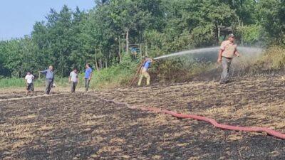 Bursa'da anız yakan çiftçiye 2 bin 800 TL ceza