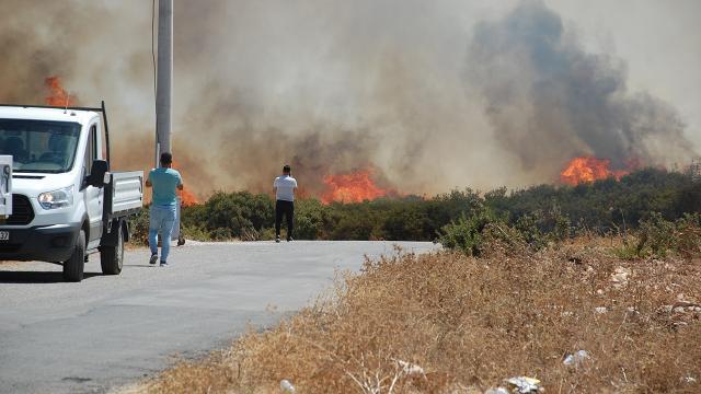 Didim'deki yangınla ilgili 3 kişi gözaltına alındı