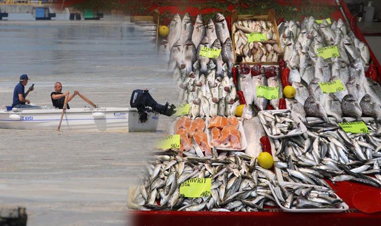 Bursa'da tehlike geçti mi? Balık alırken dikkat edin!