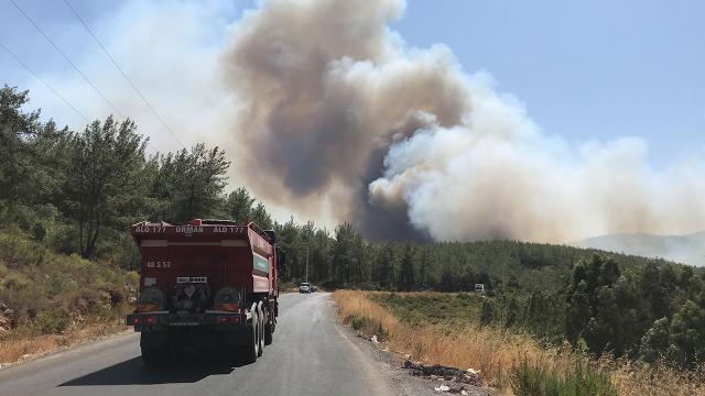 İki ilçede daha orman yangınları çıktı