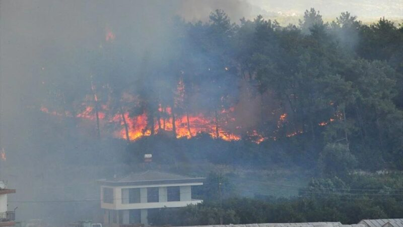 Antalya Manavgat'taki yangın kontrol altında