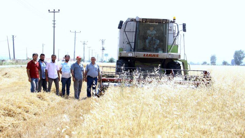 Bursa'da çiftçilerin derdi büyük!