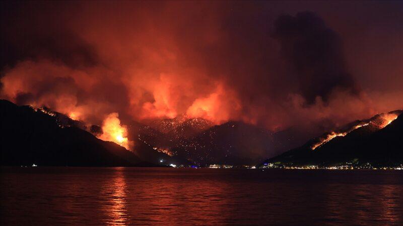 Marmaris'teki orman yangınında yürek yakan olay