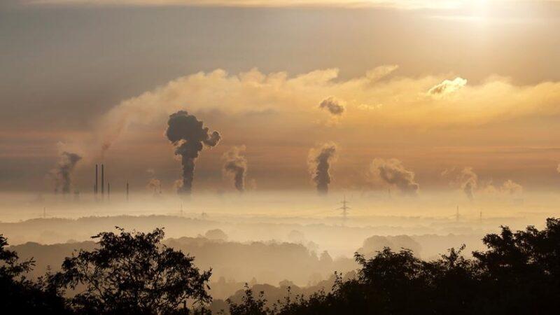 Türkiye AB'nin sınırda karbon düzenlemesine hazırlıklı olacak