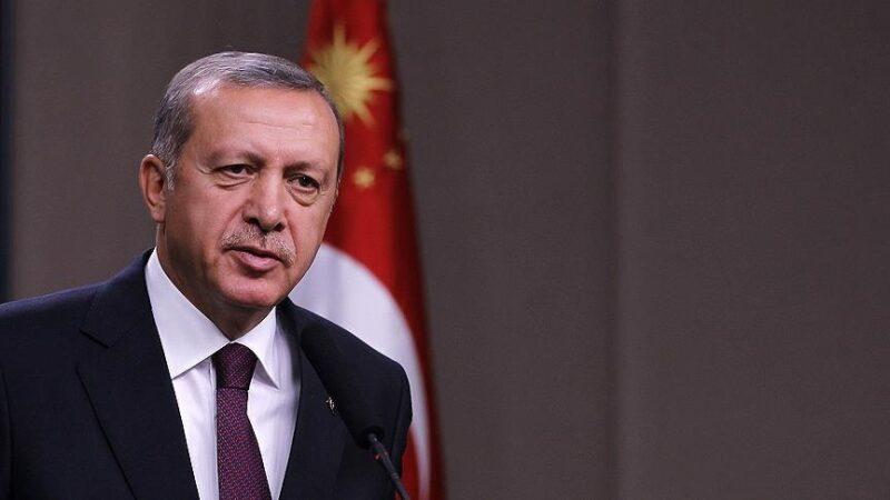 Cumhurbaşkanı Erdoğan'dan 'orman yangınları' açıklaması