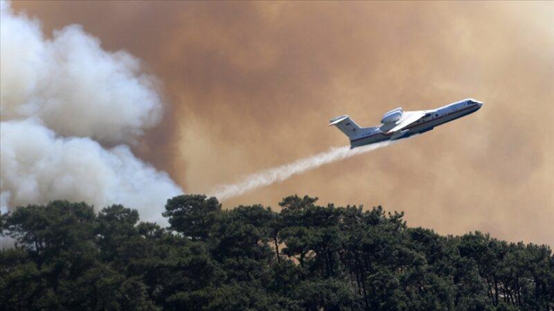 AFAD'dan yangınlarla ilgili açıklama