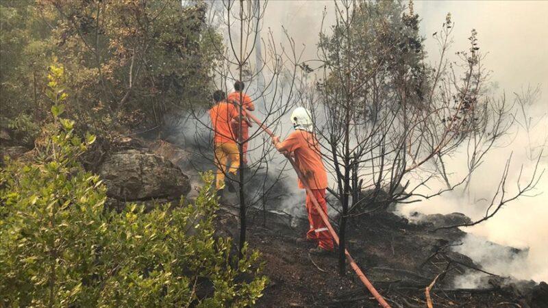 Antalya'nın iki ilçesinde daha yangın çıktı
