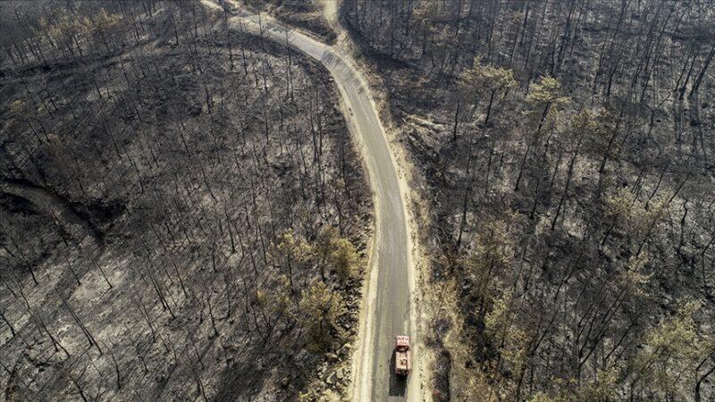 Cumhurbaşkanı Erdoğan açıkladı! Yangından etkilenen yerler afet bölgesi ilan edildi