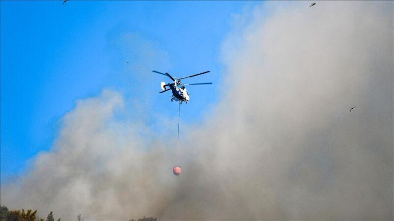 Bakan açıkladı! İşte orman yangınlarındaki son durum