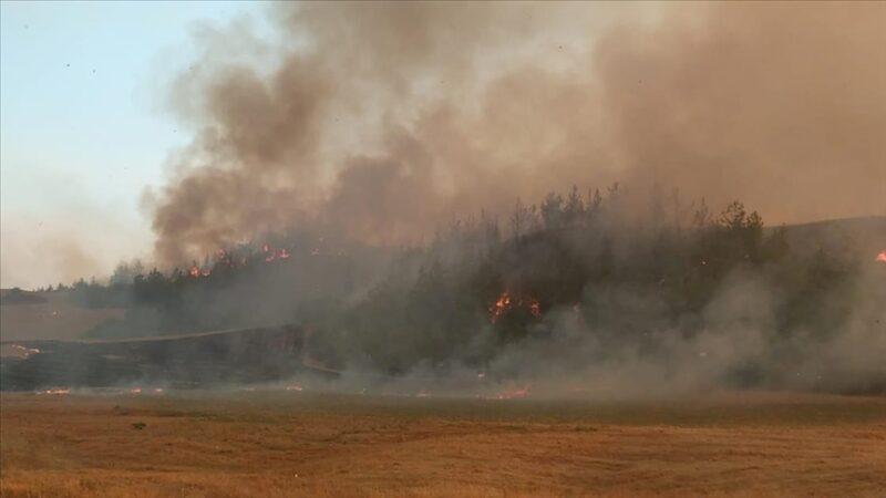 Adana Aladağ'daki orman yangını iki ilçeye sıçradı
