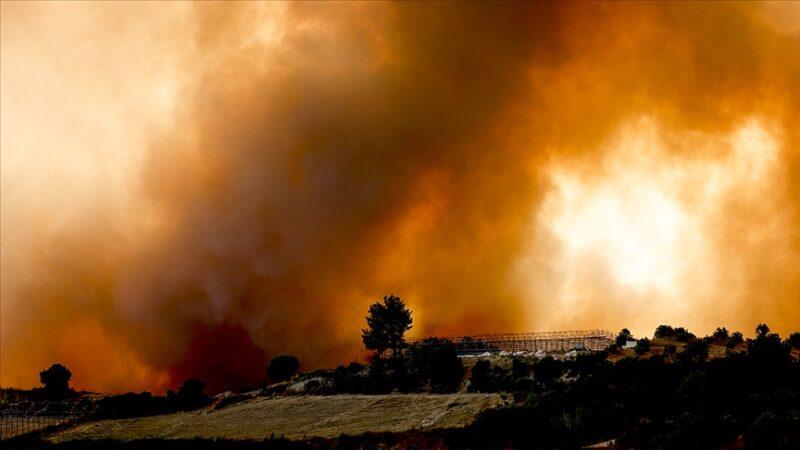 Pakdemirli'den yangınlara ilişkin paylaşım