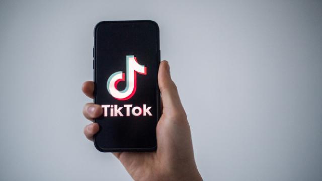 TikTok 7 milyondan fazla hesabı kaldırdı