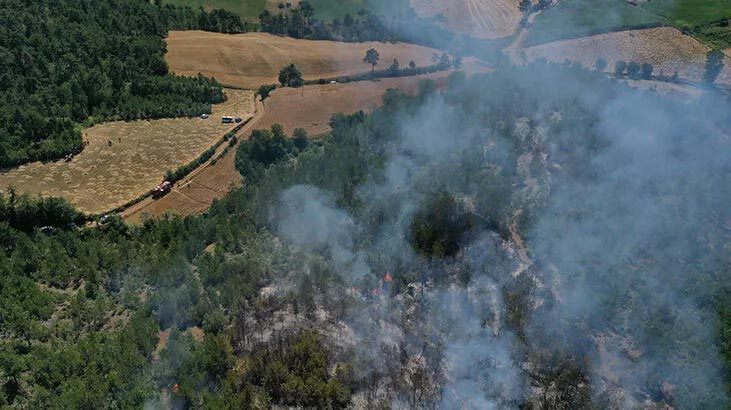 Kastamonu'da orman yangını! Ekipler bölgede