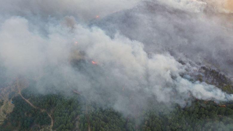 Muğla'daki yangınlara ilişkin flaş gelişme! Tutuklandılar