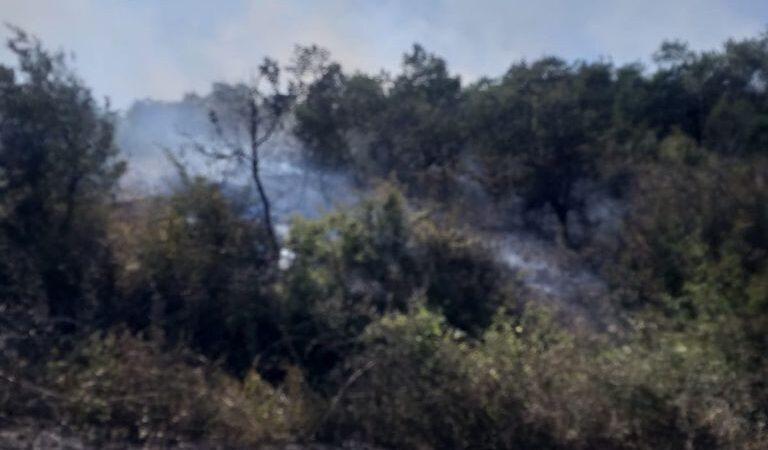 Bursa'da faciadan dönüldü! Ormana sıçradı…