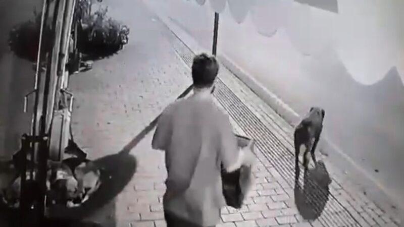 Bursa'da süpermarket hırsızları kameralara yakalandı